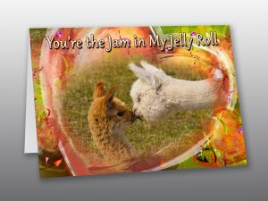 Baby Alpacas Valentine Card - Moment of Perception Photography