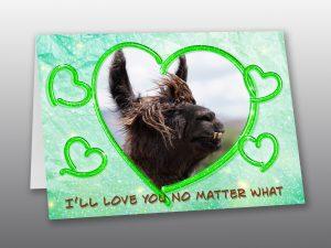 Llama Valentine Card - Moment of Perception Photography