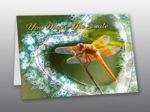 Smiling Dragonfly Valentine Card - Moment of Perception Photography
