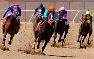 Race Horses Coming Around the Bend - Moment of Perception Photography