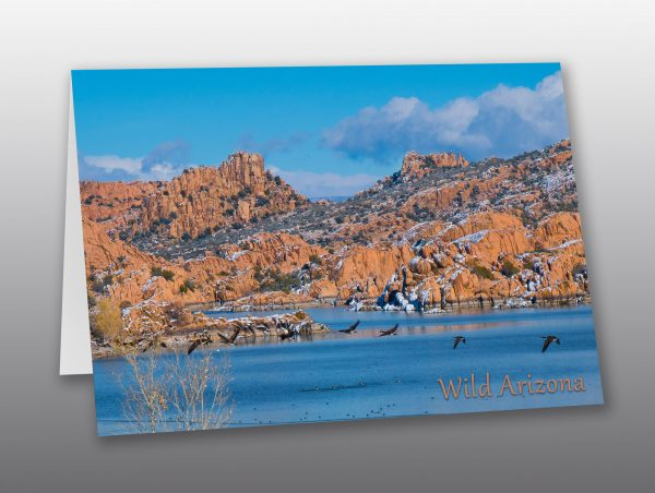watson lake in winter - Moment of Perception Photography