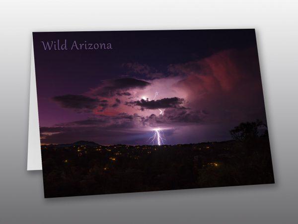 lightning storm - Moment of Perception Photography