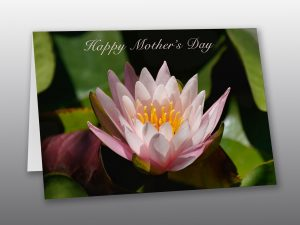 mothers-day-card - Moment-of-Perception-Photography