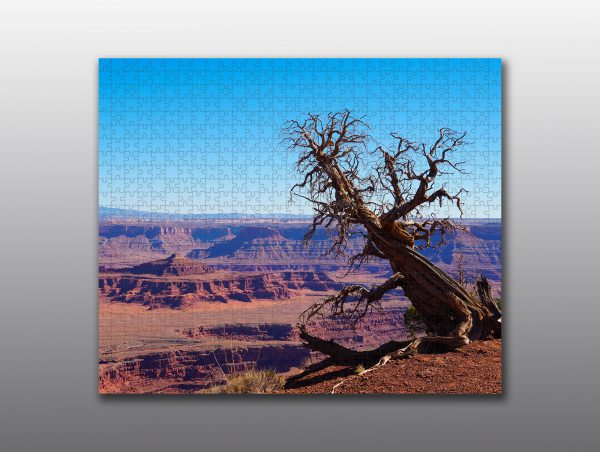 dead horse point - Moment of Perception Photography