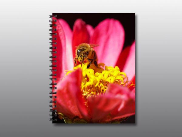 bee tongue covered in pollen - Moment of Perception Photography