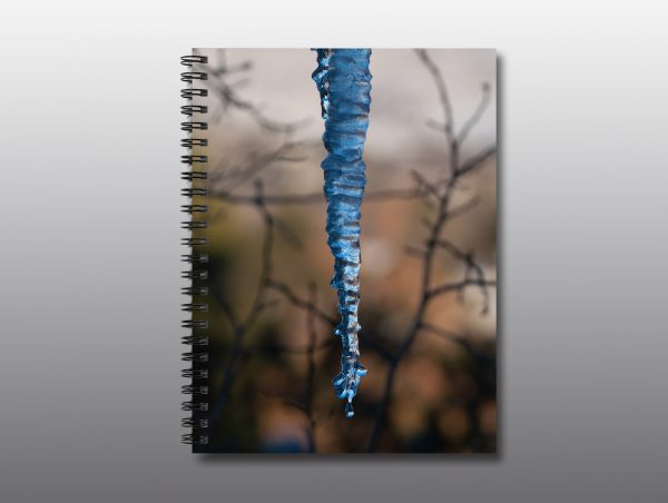 unusual icicle - Moment of Perception Photography