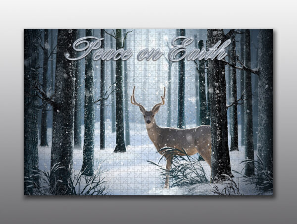 large buck in a winter forest - Moment of Perception Photography